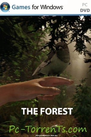 The Forest (2014)