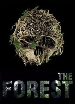 The Forest [v0.57с] (2016)